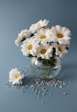 Bouquet of chrysanthemums Stock Photo