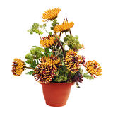 Bouquet from chrysanthemums arrangement centerpiece in vase Stock Photo