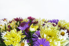 Bouquet with chrysanthemums and asters on a white background clo Royalty Free Stock Images