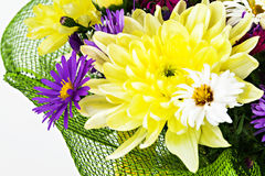 Bouquet with chrysanthemums and asters on a white background clo Stock Photo