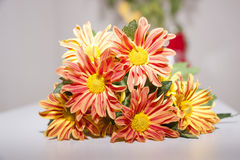 Bouquet of chrysanthemums. A bouquet of colorful chrysanthemums Stock Photos
