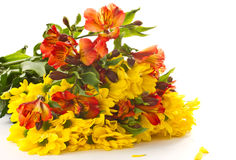 Bouquet of chrysanthemums and gerberas Stock Photos