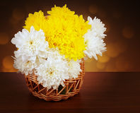Bouquet of chrysanthemums in a wicker basket Royalty Free Stock Images