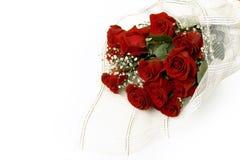 Bouquet of claret roses Stock Photos