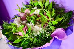 Bouquet. Close up of Bouquet of  white   and purple daisy flowers Royalty Free Stock Photos