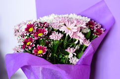 Bouquet. Close up of Bouquet of  white   and purple daisy flowers Royalty Free Stock Photo