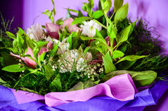 Bouquet. Close up of Bouquet of white and purple daisy flowers and fresia Stock Photos