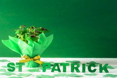 Bouquet of clovers and St Patrick words Stock Image
