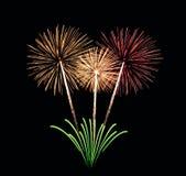 Bouquet coloré de feux d'artifice Images libres de droits