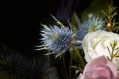 Bouquet coloré de fleur de ressort Image libre de droits