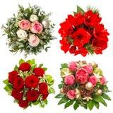 Bouquet coloré de quatre fleurs roses, amaryllis, protea d'isolement Photo libre de droits