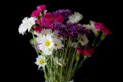 Bouquet coloré des fleurs Image libre de droits