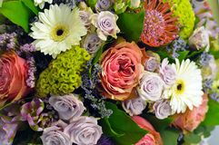 Bouquet coloré des fleurs dans l'échelle rouge photos libres de droits