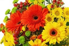 Bouquet coloré des fleurs de gerbera d'isolement sur le backgrou blanc Photographie stock