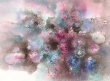 Bouquet of color asters on brown watercolor background Stock Images