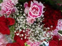 Bouquet color? lumineux de fleur d'oeillet avec des souffles de b?b? ?troitement  photo stock
