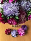 Bouquet of colored asters. Autumn flowers. Blurred background. stock image