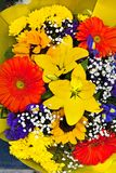 Bouquet of colored flowers royalty free stock images