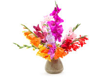 Bouquet of colored gladioli. Isolated on white Royalty Free Stock Photography