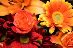 Birthday flowers bouquet. Bouquet of colorful birthday flowers stock photography