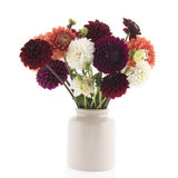Bouquet colorful Dahlias in vase Stock Images