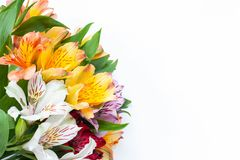 Bouquet of colourful flowers alstroemeria on white background. Flat lay. Horizontal. Mockup with copy space for greeting card stock photography