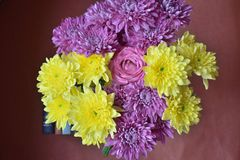 Bouquet of colorful flowers with background stock photography