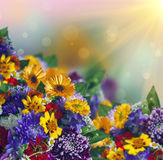 Bouquet of colorful flowers Royalty Free Stock Photos