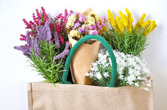 Bouquet of Colorful Flowers in Shopping Bag Stock Photo
