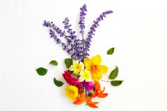Bouquet of colorful flowers on white background Stock Photos