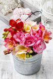 Bouquet of colorful freesia flowers Stock Images