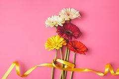 Bouquet of colorful Gerbera flowers tied with yellow ribbon, mothers day concept royalty free stock photos