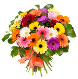 Bouquet of colorful gerberas Royalty Free Stock Images