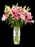 Bouquet of colorful lilies in vase isolated Stock Photos