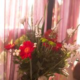 Bouquet colorful multicolored of flowers on blurred background. Flower composition royalty free stock photography