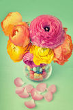 Bouquet of colorful ranunculus  in a vase full of sweets Royalty Free Stock Photo