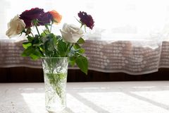 Colorful roses on table. Bouquet of colorful roses on white table stock photography