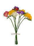 Bouquet of colorful spring freesia isolated on white Royalty Free Stock Photo