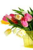Bouquet of colorful spring tulips. Stock Photo