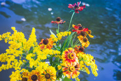 Bouquet of colorful summer flowers Stock Images