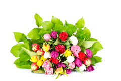 Bouquet of colorful tulips Stock Image