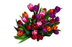 Bouquet with colorful tulips stock images