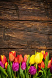 Bouquet of colorful tulips on rustic wooden planks royalty free stock photo