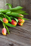 Bouquet of colorful tulips Stock Photo