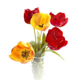 Bouquet of colorful tulips. Stock Photography