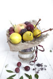 Bouquet colors hand fruits vegatables background bank Stock Photography