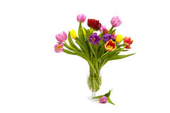 Bouquet of coloured tulips Stock Photo