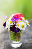 Bouquet of colourful garden flowers in a glass on old tree trunk Stock Photography