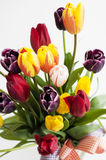 Bouquet of colourful spring tulips Royalty Free Stock Photos
