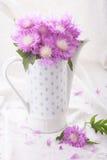 Bouquet of cornflower Stock Photos